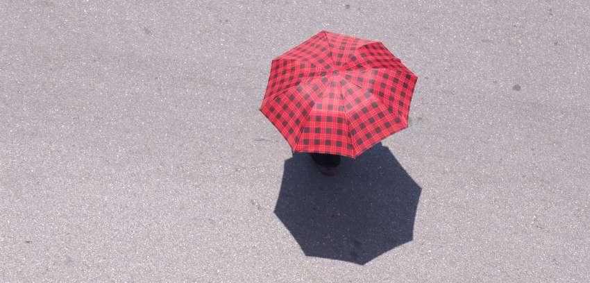 Professional Liability/Umbrella